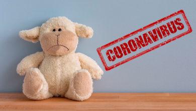 Photo of El impacto del Coronavirus en la industria del juguete en Latinoamérica y el Mundo